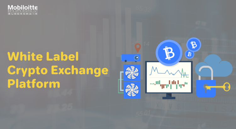A Complete Guide For Creating an Efficient White Label Cryptocurrency Exchange
