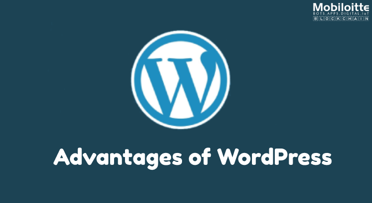 Advantages of Using WordPress for Developing Website
