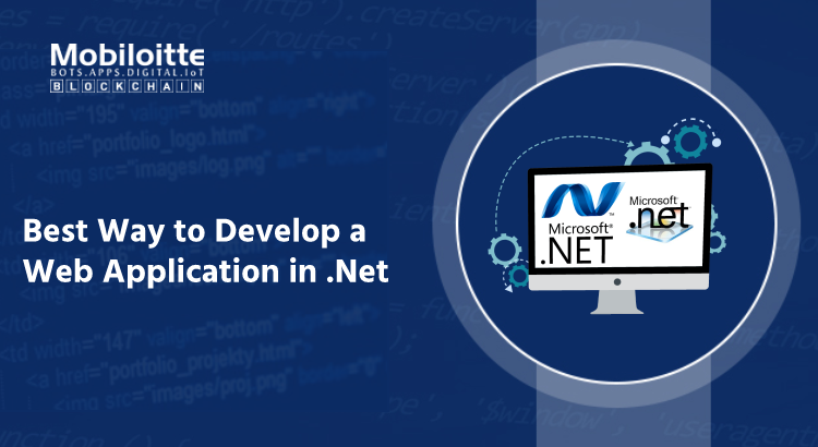 Best Way to Develop a Web Application in .Net